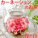 母の日ギフト お花のつぼみとティーポット 誕生日 女性 バースデー お茶 花 あす楽 カーネーション茶 お茶 工芸茶ギフト