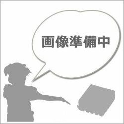 ブラザー LC113Y イエロー【洗浄液】