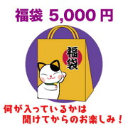 【数量限定】シークレット福袋5000円