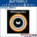 Butfly 05910