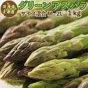 グリーンアスパラ 1kg(混合M〜2Lサイズ)北海道 千歳産 ご予約販売 5月〜6月発送 送料無料 アスパラガス クール便