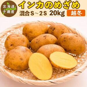 インカのめざめ 越冬 20kg(S〜2S混合)北海道 千歳産 高級 ジャガイモ 送料無料 訳あり