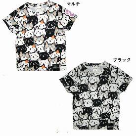 ゴーセン 2019年夏企画Tシャツ ぽちゃネコ 猫だらけ NPT16 2019SS ゆうパケット(メール便)対応 【メール便2点まで】