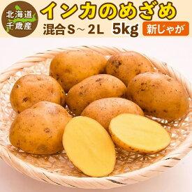 インカのめざめ 新じゃが 5kg S〜2Lサイズ混合 北海道 千歳産 ご予約販売 じゃがいも ジャガイモ 送料無料 訳あり