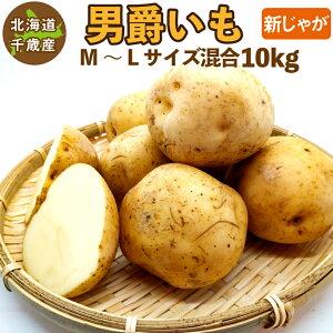 北海道産 男爵いも 新じゃが M〜2Lサイズ混合 10kg じゃがいも ジャガイモ 男爵イモ 男爵芋 送料無料 訳あり