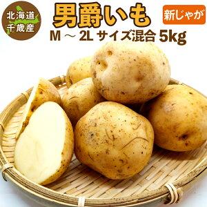 北海道産 男爵いも 新じゃが M〜2Lサイズ混合 5kg ご予約販売 9月中旬発送 男爵イモ 男爵芋 じゃがいも ジャガイモ 送料無料 訳あり