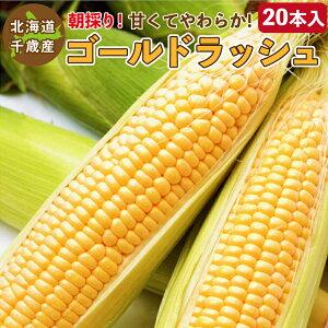 とうもろこし ゴールドラッシュ M〜2L混合 20本入り 北海道 千歳産 黄色いトウモロコシ 送料無料 ご予約販売 2021年8月中旬〜順次発送