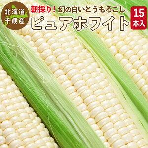白いとうもろこし ピュアホワイト L〜2L混合 15本入り 北海道 千歳産 送料無料 ご予約販売 2021年8月中旬〜順次発送