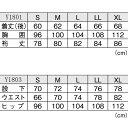 Y1801 y1803 1