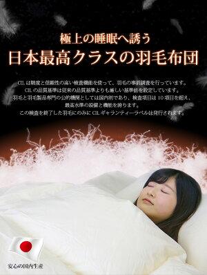 【送料無料】2枚合せ羽毛布団【N】(ホワイトマザーダックダウン93%)SLシングルロング150×210cmオフホワイトプレミアムゴールドラベル付日本製パイピングあり