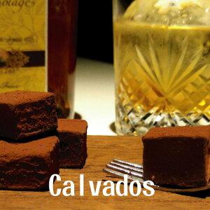 生チョコレート カルヴァドス ブランデー 16粒入り ご自宅用パッケージあす楽 早割 お取り寄せ スイーツ お菓子 洋菓子 食品 グルメ プレゼント 手土産 アウトレット お試し 限定 詰め合わせ