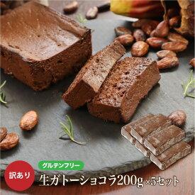 訳あり グルテンフリー 生ガトーショコラ1kg(200g×5本) お菓子 洋菓子 わけあり 小麦粉不使用 大容量 送料無料 チョコレートケーキ チョコレート ケーキ お取り寄せ スイーツ 洋菓子 大人 人気 冷凍