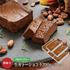グルテンフリー 訳あり 生 ガトーショコラ 1kg(200g×5本) お菓子 洋菓子 わけあり 小麦粉不使用 大容量 送料無料 チョコレートケーキ チョコレート ケーキ お取り寄せ スイーツ 洋菓子 大人 人