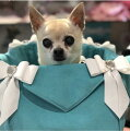 【SUSANLANCIスーザンランシー】キャリーバックセレブ愛用セレブ犬日本未発売犬用品