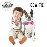 犬アクセサリー蝶ネクタイ犬用ネクタイ首輪チワワトイプードルミニチュアダックスフレブル小型犬MandarineBrothers.BowTie