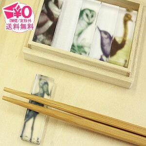 【メール便送料無料】 toumei ピクトリアル bird hashioki 箸置き キッチン 雑貨 アニマル 動物 ダチョウ カワガラス メンフクロウ ハシビロコウ カナダガン 鳥 とり トリ バード ユニーク オシャ