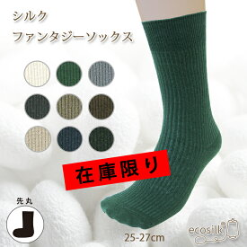 HP107 シルクファンタジーソックス25-27cm【日本製 保温 冷え性対策 冬は暖かく 夏は涼しい 蒸れにくい 重ね履き 絹 靴下 メンズ】在庫限り