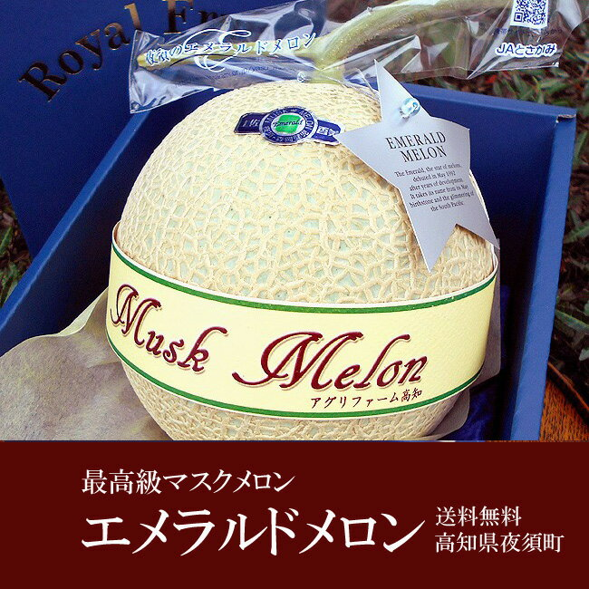 エメラルドメロン 高級マスクメロン 隔離栽培 約1.3キロ 1玉 高級化粧箱入 高知産 送料無料