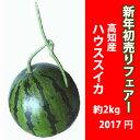 Hatsuuri-suika2017