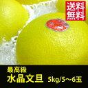 最高級品(要ご予約)◆土佐水晶文旦 (すいしょうぶんたん)◆5kg/5〜6玉★※9月下旬以降から発送となります