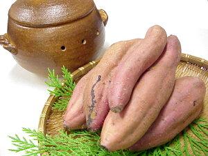 蜜芋 みついも 安納芋品種 約5キロ M〜Lサイズ 高知産 焼芋専用 高糖度 甘い ネットリ さつまいも サツマイモ 安納芋 ミエルスイート 焼き芋 やきいも スマステ はなまる