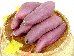 紅はるか べにはるか 約5キロ M〜Lサイズ 高知産 新種の蜜芋 焼芋専用 高糖度 甘い ネットリ さつまいも サツマイモ ベニハルカ 焼き芋 やきいも スマステ はなまる