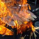 鰹(かつお)「生たたき」 約700グラム(4〜5人前) 藁焼き とれたてをタタキ、冷凍せず「その日」に発送[Qok7]【月曜…