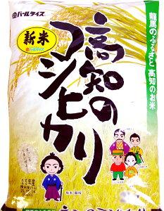 こしひかり 5キロ 高知県産 令和1年産 精米 お米 こめ 白米 ご飯 ごはん コシヒカリ ギフト プレゼント 産地直送 銀シャリ