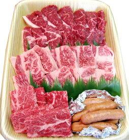 土佐あかうし 土佐和牛 ロース・カルピ・モモの焼肉セット wagyu 土佐赤牛 和牛 牛肉 焼肉 ステーキ しゃぶしゃぶ 高級 ギフト プレゼント お取り寄せ 産地直送 お中元 お祝い(MM)(100016)