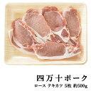 800 pork sima06