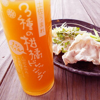 Product made in use of three kinds of citrus fruit dressing non oil 150 ml *2 set Yamakita mandarin oranges, Tosa orange (grow on), citrons Ken Shaw from Kochi