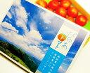 ★7月からの発送予定 高知産・高原フルーツトマト(約1kg化粧箱入り/玉数おまかせ品)