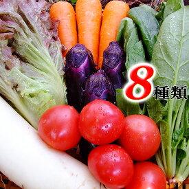 とれたて野菜 8種類セット詰め合わせ 高知産 レシピ・追加機能付き 送料無料 [Qv10] 詰め合わせ クール便 新鮮 葉物 根菜 香味 定番野菜 翌日発送も可 土佐 四国 西日本 野菜ジュース【Cool delivery】