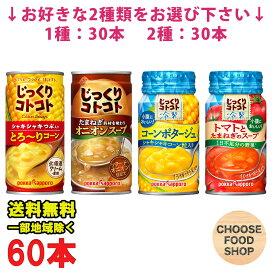 選べる2ケース ポッカサッポロ じっくりコトコト ホットスープ 冷製スープ 缶 30本×2ケース (とろーりコーン / オニオン / コーンポタージュ / トマトとたまねぎ) まとめ買い HOT COLD