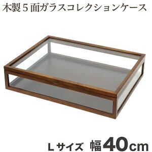 『木製ジュエリーケース』 5面ガラス ジュエリーボックス アクセサリーボックス 小物 収納箱 おしゃれ 収納ケース ディスプレイケース 時計 アクセサリーケース コレクションケース ブラウ