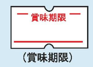ハンドラベラーACE用ラベル(10巻入) 賞味期限【ラベラー ラベルプリンタ】【包装用品】【値札】【業務用】