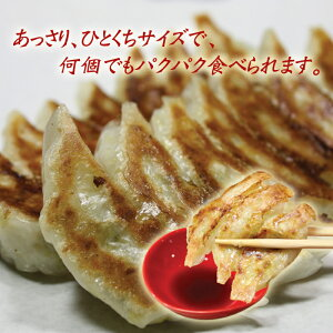 【お得パック】冷凍生餃子140個入(70個×2セット)金太郎ギョーザ/餃子パーティー/お酒のおつまみに