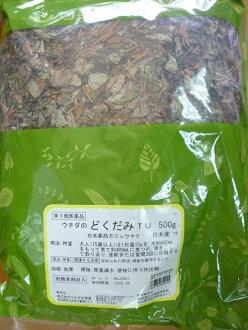 Dokudami (houttuynia cordata, herbâ, Director, Uchida Oriental Medicine)