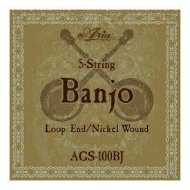 ARIA AGS-100BJ Banjo バンジョー弦