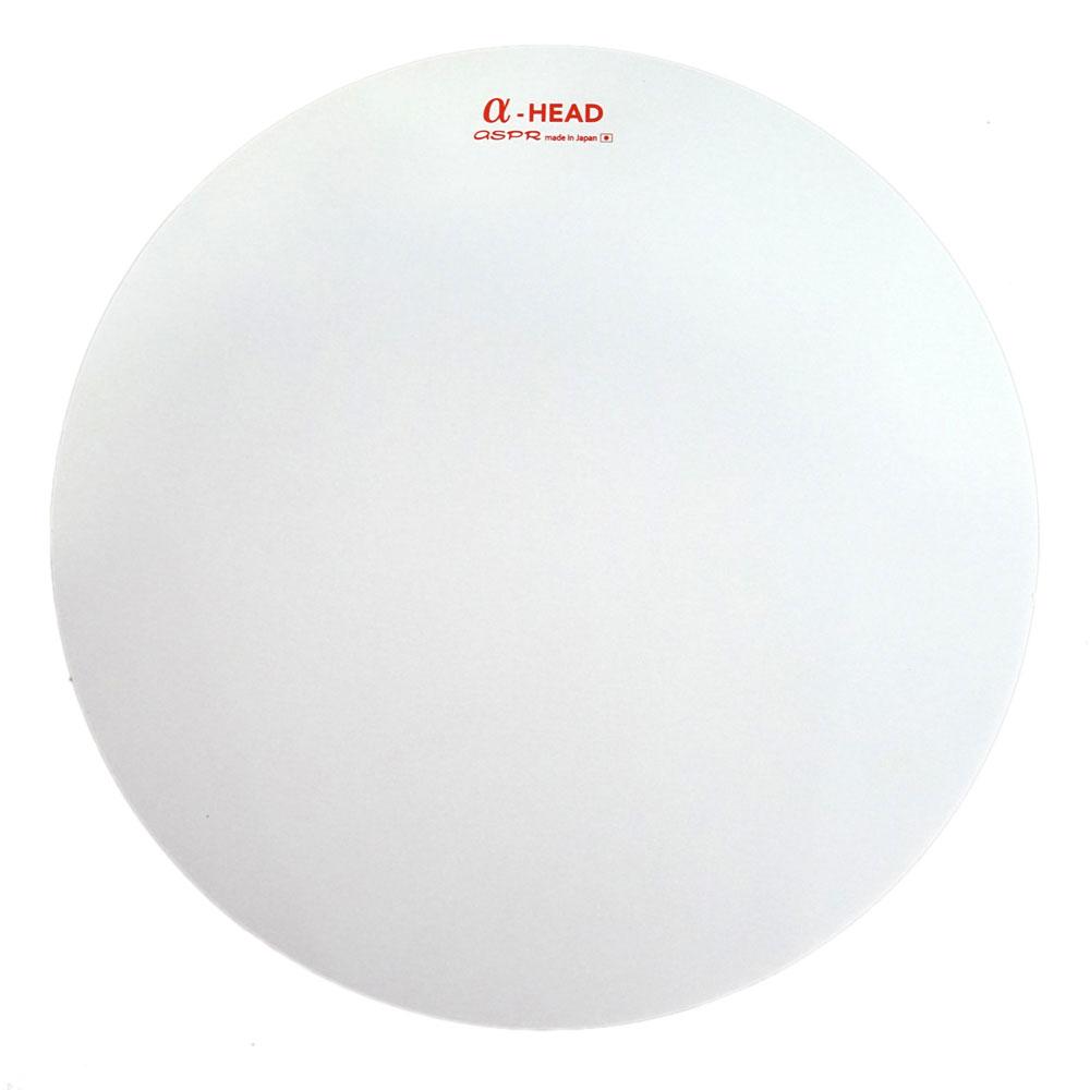 ASPR(アサプラ)α-HEAD 14インチ ブラシ練習用シート