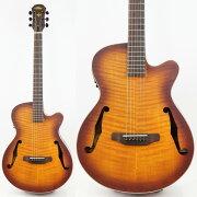 ARIAFET-F1LVSアウトレットエレクトリックアコースティックギター
