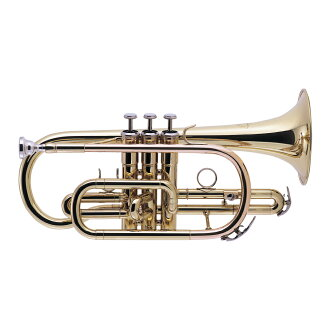 Whole tone ZCT420 cornet brass lacquer finish