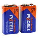【9Vアルカリ電池 2個パック】 PKCELL BATTERY 6LR61-2B