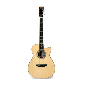 ASTURIAS SOLO HERRINGBONE アコースティックギター セミハードケース付き