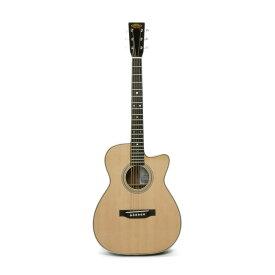 ASTURIAS SOLO STANDARD/S アコースティックギター セミハードケース付き