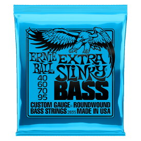 ERNIE BALL 2835/EXTRA SLINKY BASS ベース弦×2セット
