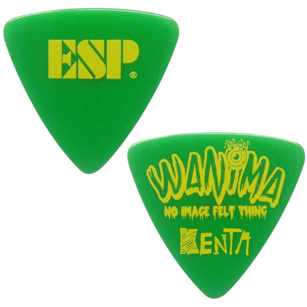 ESP PA-WK10-2 GR WANIMA KENTA PICK ギターピック×10枚