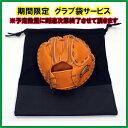 期間限定 グラブ袋付き野球 守備練習守備の基本の習得キャッチングマスターFTRG−2627トレーニンググラブ野球練習器…