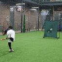 壁ネットFKB−1310Kフィールディング ピッチング練習少年野球学童野球フィールドフォース