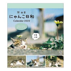 仔猫 にゃんこ日和 関由佳 2022 カレンダー 壁掛け スケジュール ねこ キャット APJ かわいい 動物 写真 書き込み 令和4年 暦 シネマコレクション 21clsc